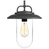 Progress P550019-031 Beaufort 1 Light 10 inch Black Outdoor Hanging Lantern