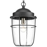 Progress P550025-031 Holcombe 1 Light 11 inch Textured Black Outdoor Hanging Lantern