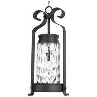 Hermosa 1 Light 12 inch Black Outdoor Hanging Lantern, Design Series