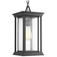 Endicott 1 Light 7 inch Black Outdoor Hanging Lantern