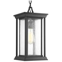 Progress P5500-31 Endicott 1 Light 7 inch Black Outdoor Hanging Lantern