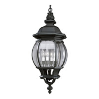 Onion Lantern 4 Light 11 inch Textured Black Outdoor Hanging Lantern
