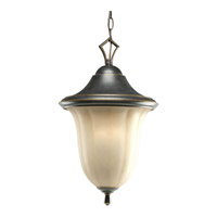 Progress Lighting Le Jardin 1 Light Outdoor Hanging Lantern in Espresso P5507-84
