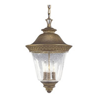 Progress Lighting Savannah 3 Light Outdoor Hanging in Burnished Chestnut P5515-86