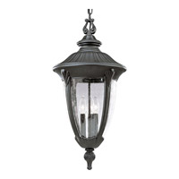 Progress Lighting Meridian 3 Light Outdoor Hanging in Textured Black P5520-31