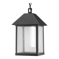 Progress Lighting Domino 1 Light Outdoor Hanging in Black P5525-31
