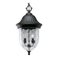 Coventry 2 Light 10 inch Textured Black Outdoor Hanging Lantern