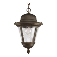 Westport 1 Light 9 inch Antique Bronze Outdoor Hanging Lantern in Bulbs Not Included, Clear Seeded