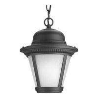 Westport LED 9 inch Black Outdoor Hanging Lantern in Integrated LED, Etched Seeded