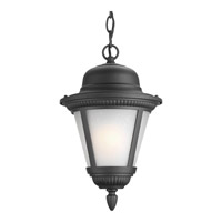 Progress Lighting Westport 1 Light Outdoor Hanging Lantern in Black P5530-31WB