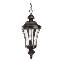 Progress Lighting Nottington 3 Light Outdoor Hanging Lantern in Forged Bronze P5538-77