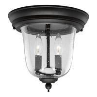 Progress Lighting Ashmore 2 Light Outdoor Ceiling in Textured Black P5562-31 photo thumbnail