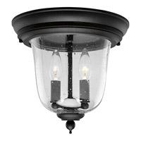 Progress Lighting Ashmore 2 Light Outdoor Ceiling in Textured Black P5562-31 alternative photo thumbnail