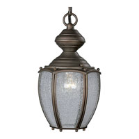 Progress Lighting Roman Bronze 1 Light Outdoor Wall Lantern in Roman Bronze P5565-19 photo thumbnail