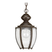 Progress Lighting Roman Coach 1 Light Outdoor Hanging Lantern in Antique Bronze P5565-20