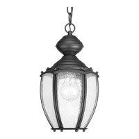 Progress Lighting Roman Coach 1 Light Outdoor Hanging Lantern in Black P5565-31