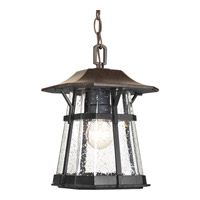 Derby 1 Light 9 inch Espresso Outdoor Hanging Lantern