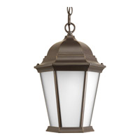 Welbourne 1 Light 10 inch Antique Bronze Outdoor Hanging Lantern in Etched, Fluorescent