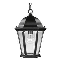 Welbourne 1 Light 10 inch Textured Black Outdoor Hanging Lantern in Clear Beveled, Standard