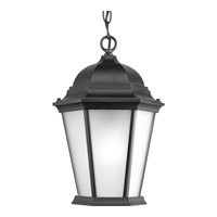 Welbourne 1 Light 10 inch Black Outdoor Hanging Lantern in Etched, Fluorescent
