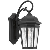 Verdae 1 Light 13 inch Black Outdoor Wall Lantern, Small, Design Series