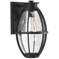 Progress P560024-031 Pier 33 1 Light 13 inch Black Outdoor Wall Lantern Large
