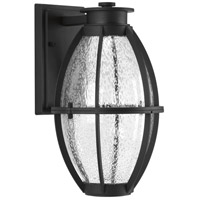 Pier 33 LED 13 inch Black Outdoor Wall Lantern
