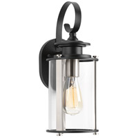 Squire 1 Light 15 inch Black and Stainless Steel Outdoor Wall Lantern, Small