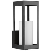Patewood 1 Light 12 inch Black Outdoor Wall Lantern, Small, Design Series