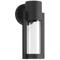 Z-1030 LED 12 inch Black Outdoor Wall Lantern, Small