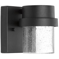 Z-1060 LED 5 inch Black Outdoor Wall Lantern