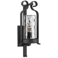 Progress P560074-031 Hermosa 1 Light 21 inch Black Outdoor Wall Lantern Design Series