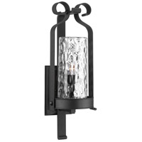 Hermosa 1 Light 32 inch Black Outdoor Wall Lantern, Design Series