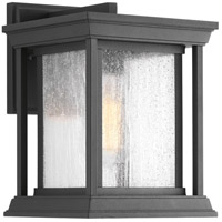 Endicott 1 Light 11 inch Black Outdoor Wall Lantern, Small