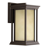 Progress Lighting Endicott 1 Light Outdoor Wall Lantern in Antique Bronze with Etched Umber Linen Glass P5610-20