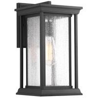 Endicott 1 Light 14 inch Black Outdoor Wall Lantern, Medium
