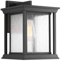 Endicott 1 Light 13 inch Black Outdoor Wall Lantern, Large