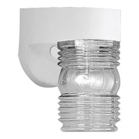 Progress Lighting Polycarbonate Outdoor 1 Light Outdoor Wall in White P5612-30