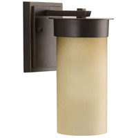 Hawthorne 1 Light 10 inch Antique Bronze Outdoor Wall Lantern, Etched Umber Seeded Glass