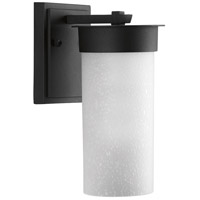 Hawthorne 1 Light 10 inch Black Outdoor Wall Lantern, Etched Seeded Glass