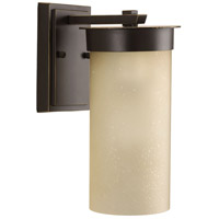 Hawthorne 1 Light 13 inch Antique Bronze Outdoor Wall Lantern, Etched Umber Seeded Glass