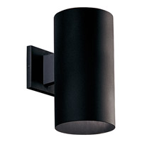 Cylinder 1 Light 12 inch Black Outdoor Wall Lantern in Standard