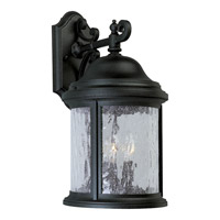 Ashmore 3 Light 17 inch Textured Black Outdoor Wall Lantern