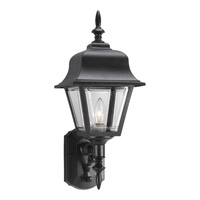 Non-Metallic 1 Light 20 inch Black Outdoor Wall Lantern