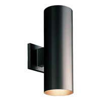 Cylinder 2 Light 14 inch Black Outdoor Wall Lantern in Standard