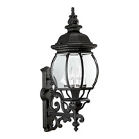 Onion Lantern 4 Light 31 inch Textured Black Outdoor Wall Lantern