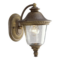 Progress Lighting Savannah 1 Light Outdoor Wall in Burnished Chestnut P5714-86