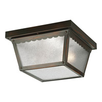 Signature 2 Light 9 inch Antique Bronze Outdoor Ceiling Lantern in Textured