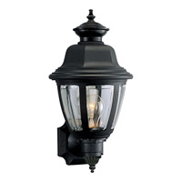 Non-Metallic 1 Light 16 inch Black Outdoor Wall Lantern