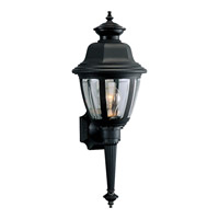 Non-Metallic 1 Light 21 inch Black Outdoor Wall Lantern